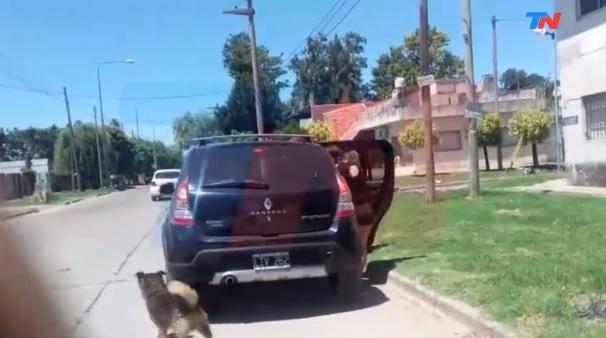Un perro corrió 15 cuadras detrás de la familia que lo abandonó