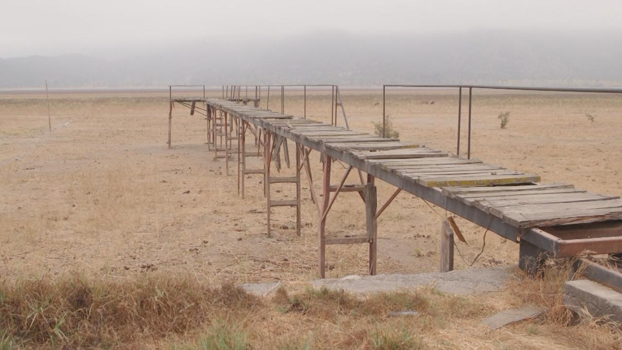 Paine se seca: La tragedia de familias y pequeños agricultores que se  quedaron sin agua
