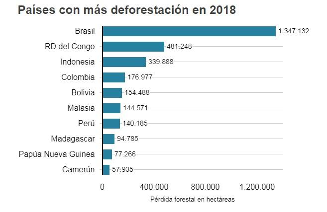 No hay caso! La deforestación de la Amazonía pone en riesgo