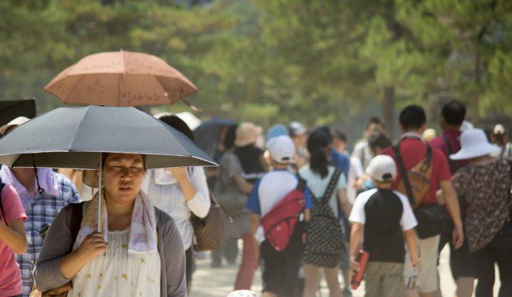 La ola de calor deja más de 70 muertos en Japón