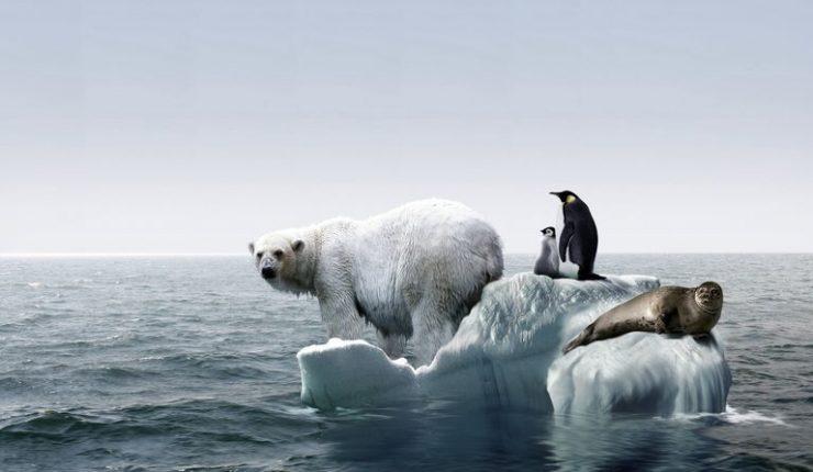 La ONU lanza ultimátum para evitar un cambio climático catastrófico