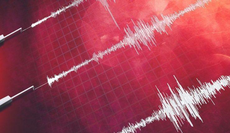 Un terremoto de 7,4 de magnitud sacudió el noreste de Nueva Zelanda