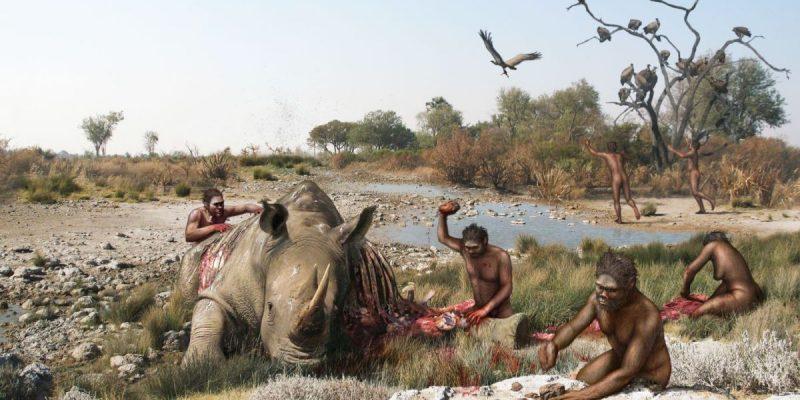 Fósiles de Algeria ponen en duda que el este de África sea la cuna de  nuestro origen